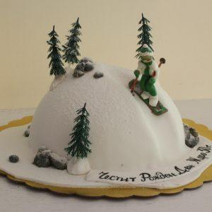 torta snowboard